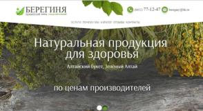 Продвижение сайтов в Cаратове - SEO раскрутка сайтов | RAYBIN